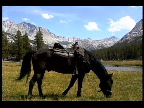 Photography Of The Eastern Sierra Nevada Mountains From Horse Back: Pack Station Mules; Scenery