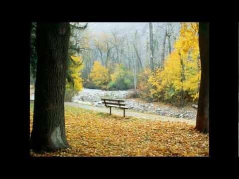 Düş Sokağı Sakinleri - Acılar Parkı mp3 indir