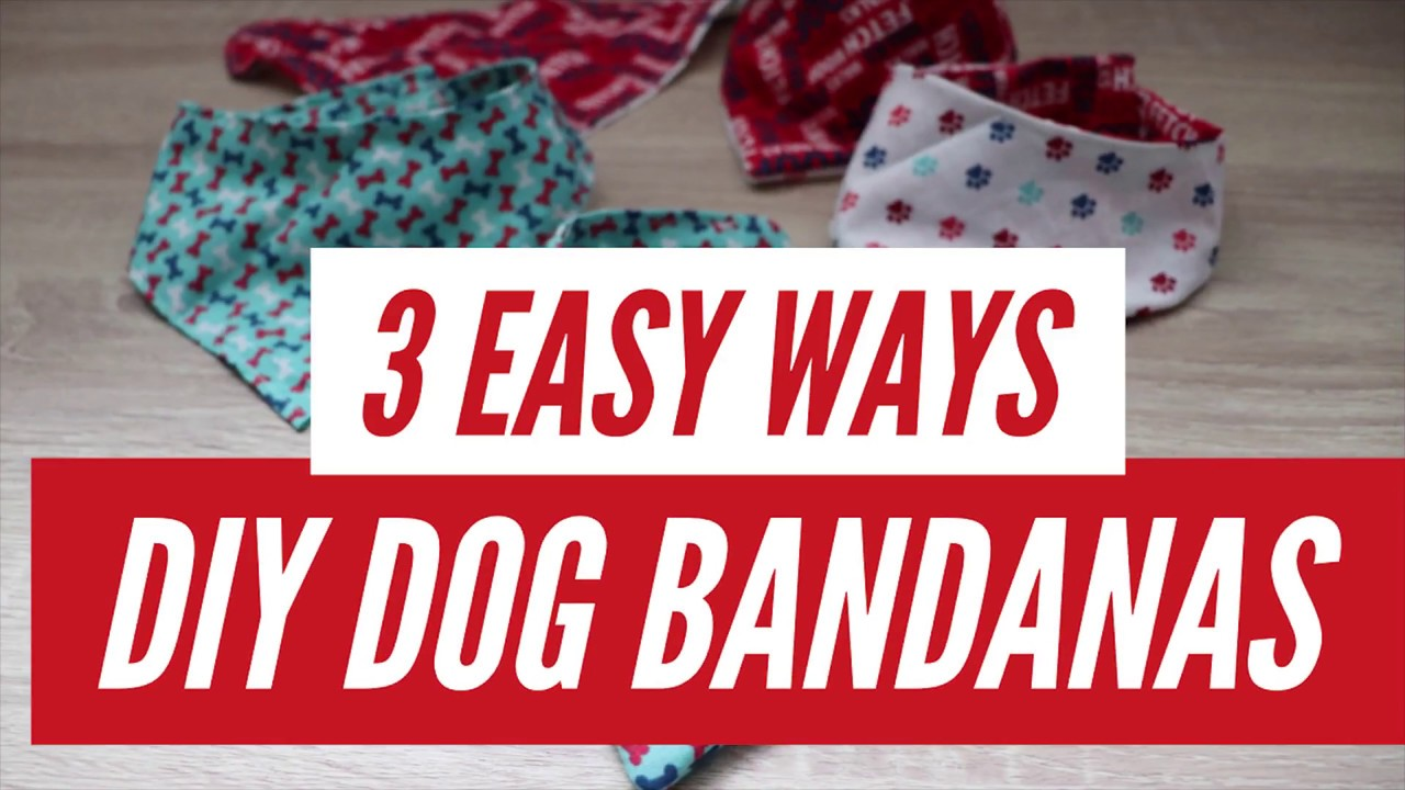 Diy Reversible Dog Bandana 3 Easy Ways