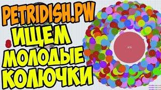 PETRIDISH.PW | # 10 | ВЕСЁЛЫЕ ЭКСПЕРИМЕНТЫ