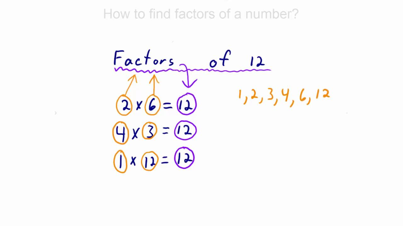 Worksheet What Is Factors Of A Number what are factors and how to find of a number youtube number