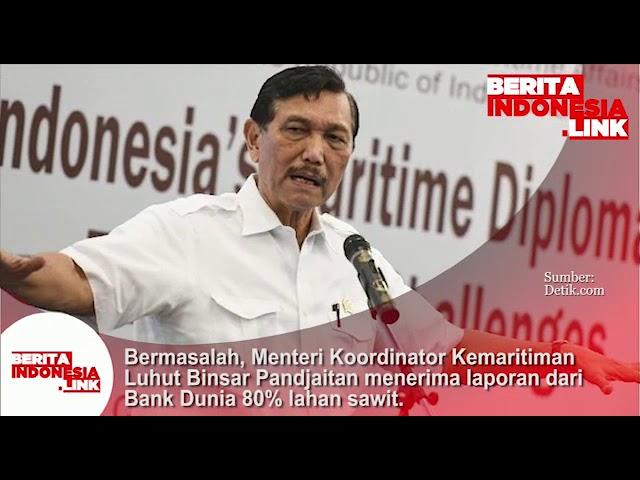 Menko Maritim Luhut Binsar P menerima  laporan dari Bank Dunia bahwa 80% lahan sawit Bermasalah!!