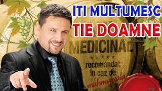 Nicu Paleru - Iti multumesc tie Doamne (muzica de petrecere 2015)