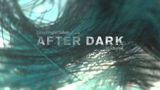 Rodion - Solenoid (Late Night Tales presents After Dark: Nocturne)