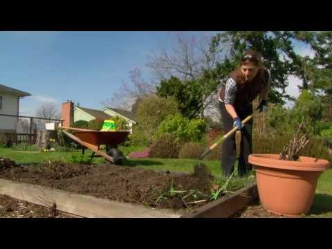 Building Great Soil - Gardening Tips From Canadian Tire