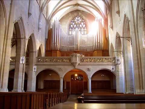 J. S. Bach - Cantatas BWV 21, 135; Concerto BWV 1044 - J. E. Gardiner (Vol2 CD2)