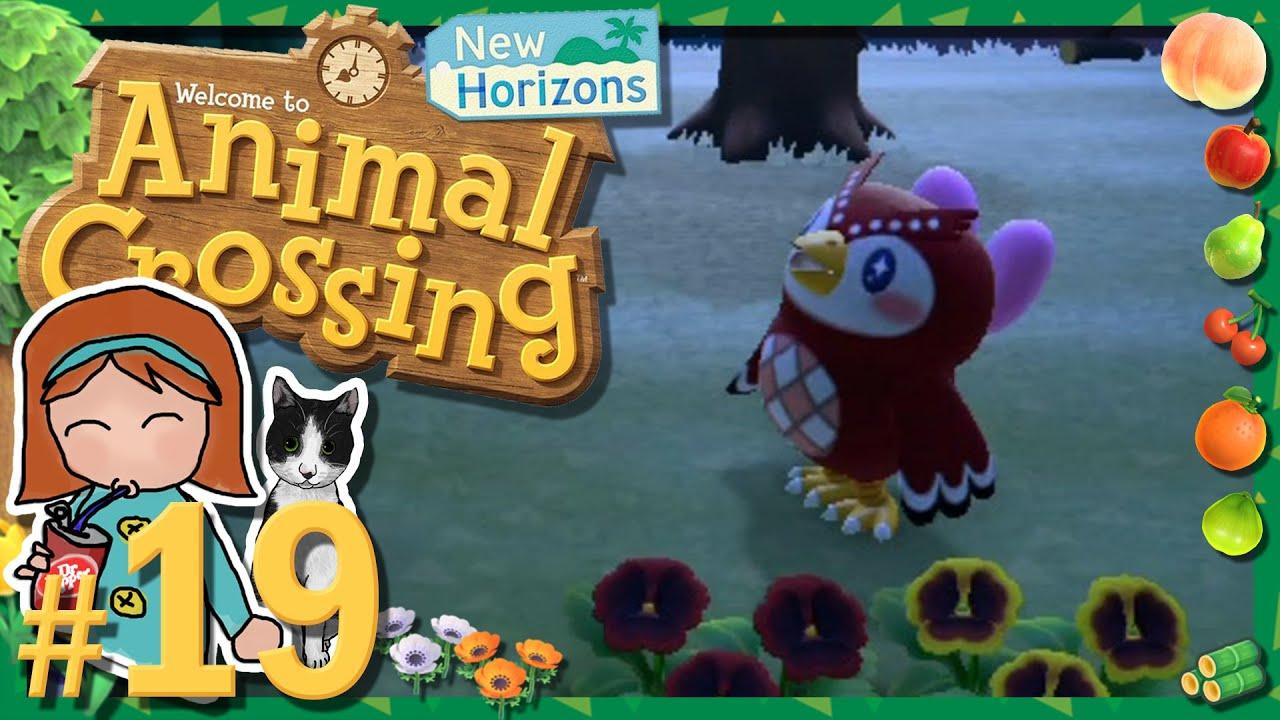 Re Uploaded Animal Crossing New Horizons 19 Aries