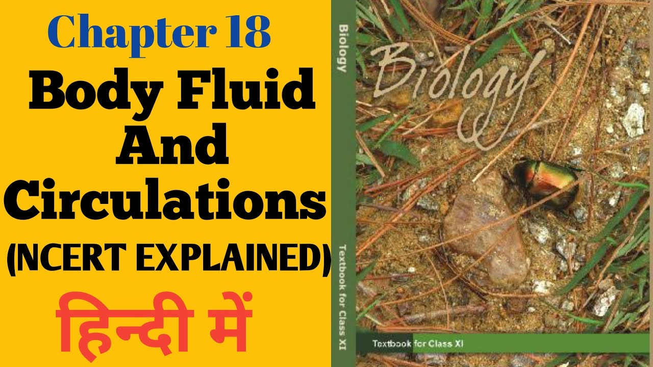 Body Fluid and Circulation Class 11 Ncert Explained in ...