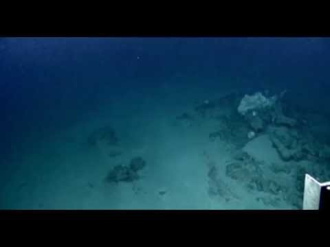 Millions in Gold Found In Ocean Wreck