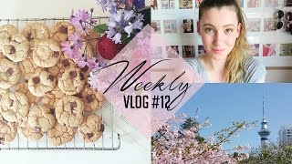 Baking with Ellen & Working in a Hospital? | Weekly Vlog #12