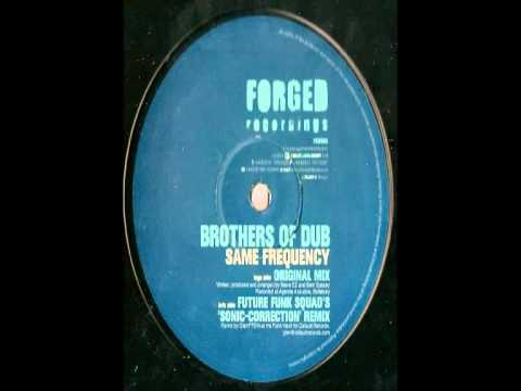 Brothers Of Dub -- Same Frequency (Future Funk Squad's 'Sonic Correction' Remix)