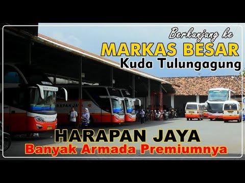 The Headquarter of Premium Tulungagung Cavalry | HARAPAN JAYA