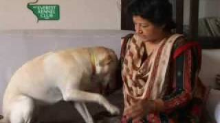 Pyarosathi [documentary By Mekc] - Part 1