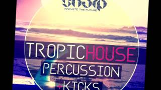Tropic House Percussion & Kicks + Bonus Construction Kits | 100% Royalty-Free