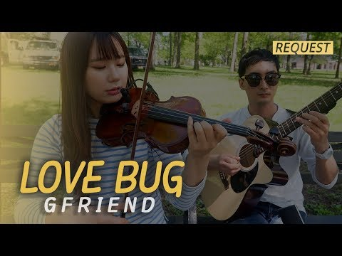 [ LOVE BUG - 여자친구 (GFRIEND) ] - Violin/Guitar Cover --REQUEST SONG