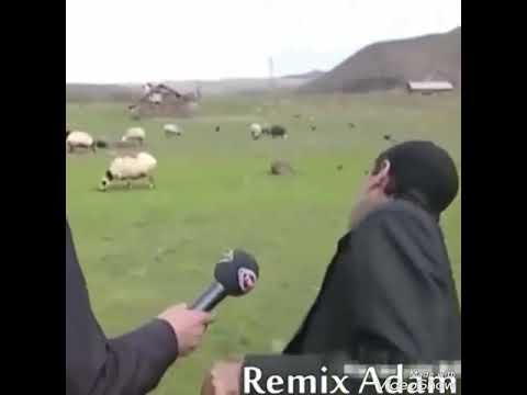Koyun çağıran adam vs çocuk