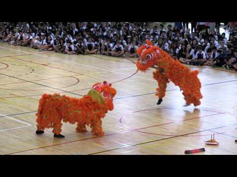 Lion Dance at CIS Lakeside 2017