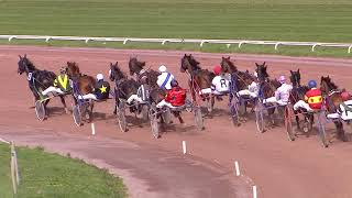 Vidéo de la course PMU PRIX DE FRIBOURG