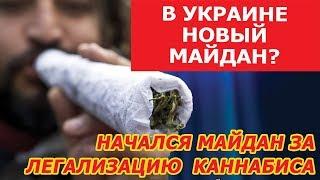 МАЙДАН 3.0 НАЧАЛСЯ??? ЗАЧЕМ Украине ка.ннабиc