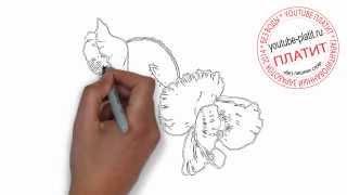 Как нарисовать красный тюльпан поэтапно