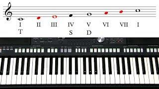 Самоучитель игры на синтезаторе  Урок 8  Лад и тональность  Устойчивые и главные ступени