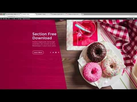 How To Make Beautiful Web Pages For Your WordPress Website! | Divi Theme Tutorial