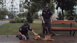 Как полиция с собакой преступника ловила — На троих — 3 сезон – 4 серия