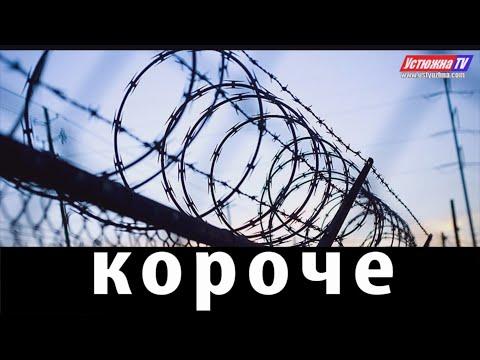 «Короче» – новости города Устюжны и Устюженского района №2 (151) от 21.01.2020