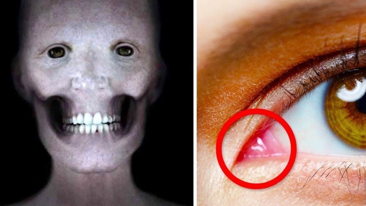 17 Cosas asombrosos que no sabías sobre el cuerpo humano