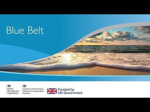 Blue Belt programme
