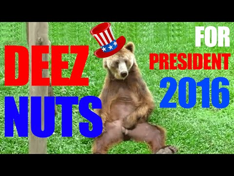 Deez Nuts For President 2016 Presidential Race Poll