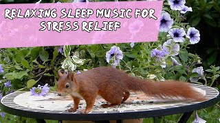 3 Hours of Relaxing Sleep Music for Stress Relief. Music for Sleeping & Medieval meditation moti