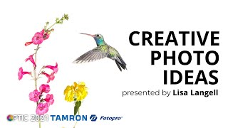 Creative Concepts for Busy Photographer with Lisa Langell   OPTIC 2021