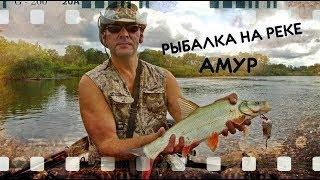 Амурская Рыбалка (верхогляд, желтощёк, сом)