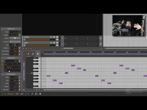 Bitwig Studio 401: Bitwig Studio Advanced Production Workflows - Intro