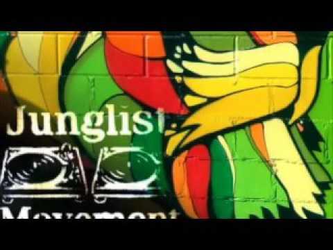 Babylon Ragga Jungle Mix (432 hz)