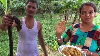 Indian Snake ( Kuche ) Fish Preparation  Healthy Fish - Good for Anemia  Village Cooking Show