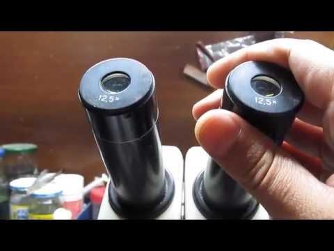 Как рассчитать увеличение микроскопа