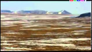 Phim | Thế giới động vật Các loài động vật ở vùng bắc cực thuộc nước Nga phần 1 | The gioi dong vat Cac loai dong vat o vung bac cuc thuoc nuoc Nga phan 1