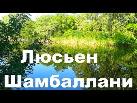 Музыка для благодарных слушателей. С любовью и благодарностью композитор Люсьен Шамбаллани.