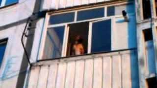 Собака выглядывает с балкона. Херсон. +100500