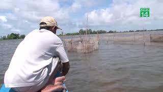 Ngư dân vùng lũ đầu nguồn thu nhập khá từ đánh bắt cá mùa lũ | VTC14