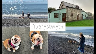 HE PROPOSED! 💍 OUR ABERYSTWYTH COTTAGE HOLIDAY 💕