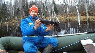 Рыбалка в Ноябре в Карелии на щучьем,красивом  болотном озере!!!
