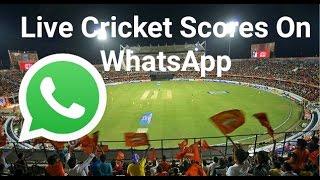 Live Cricket Scores On WhatsApp [Hindi]   Use WhatsApp As Search Engine screenshot 2