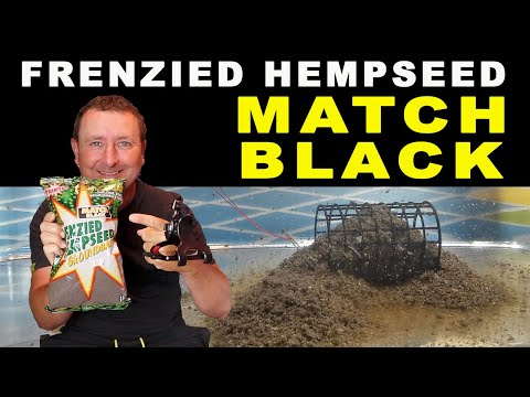 MATCH BLACK Frenzied Hempseed TANK TESTED Dynamite Baits - Fishing Baits Buyers Guide August 2020