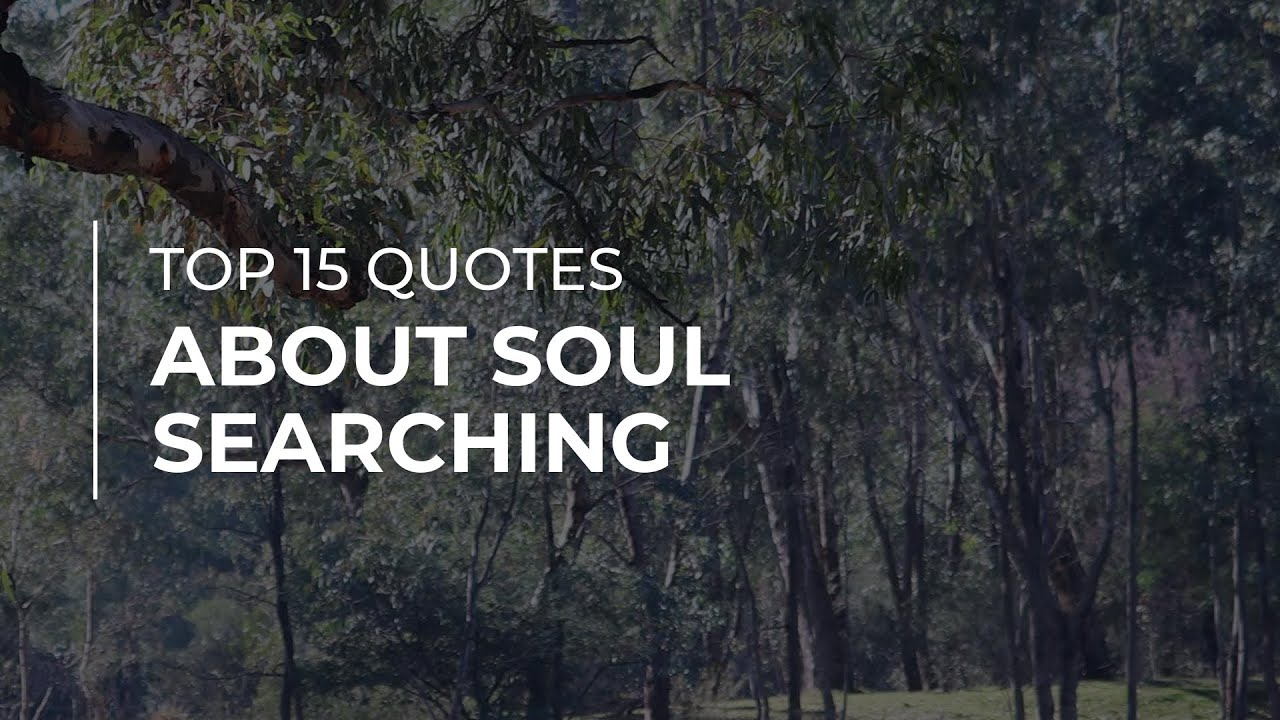 TOP 15 Quotes about Soul Searching | Daily Quotes | Soul Quotes |  Motivational Quotes