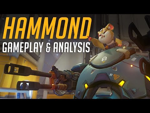 New Overwatch Hero HAMMOND — Gameplay & Ability Analysis!