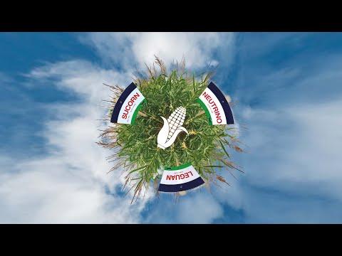 Sortenschauen 2020 – Jetzt neu mit Mais!