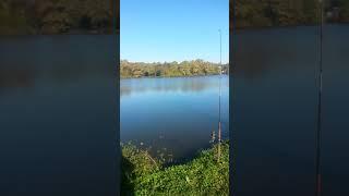 Утреняя рыбалка на озерах